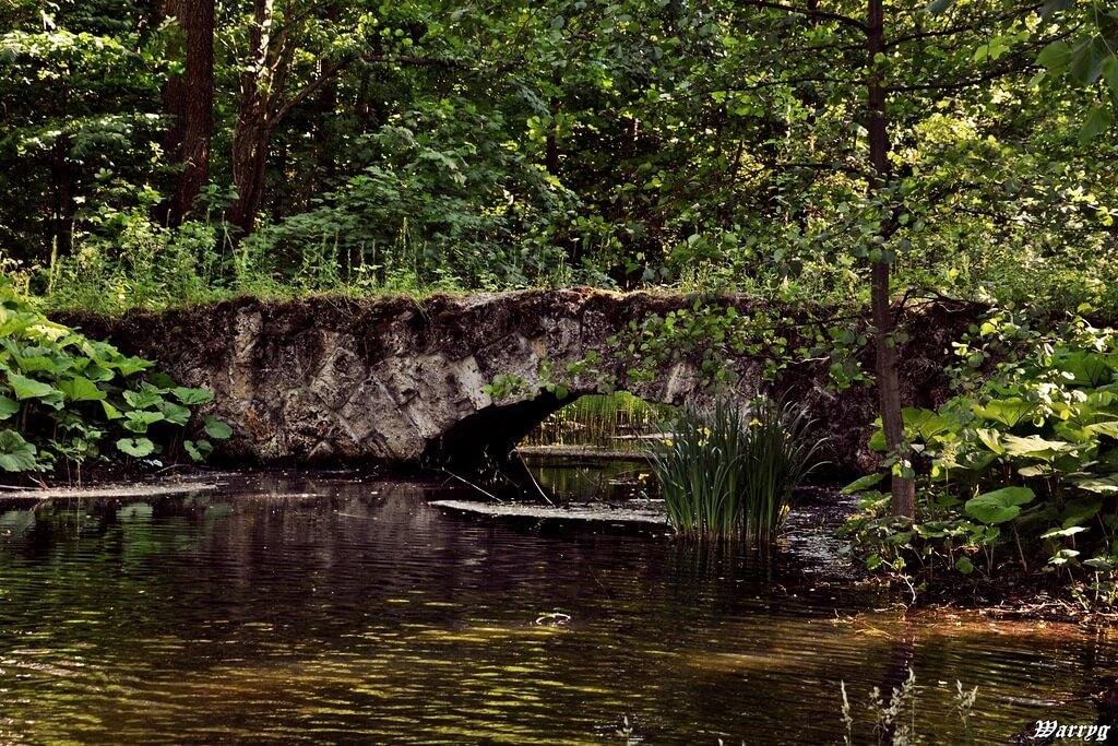 Петродворец. Английский парк