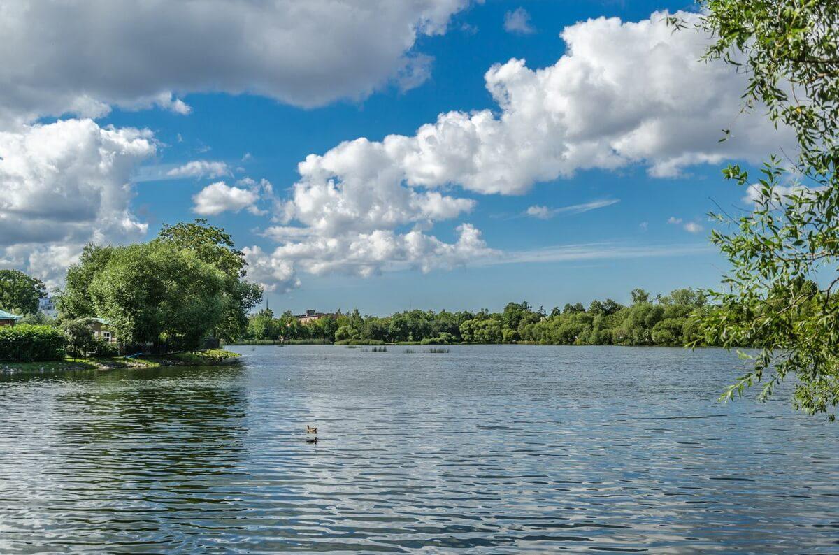 Колонистский парк Петергофа