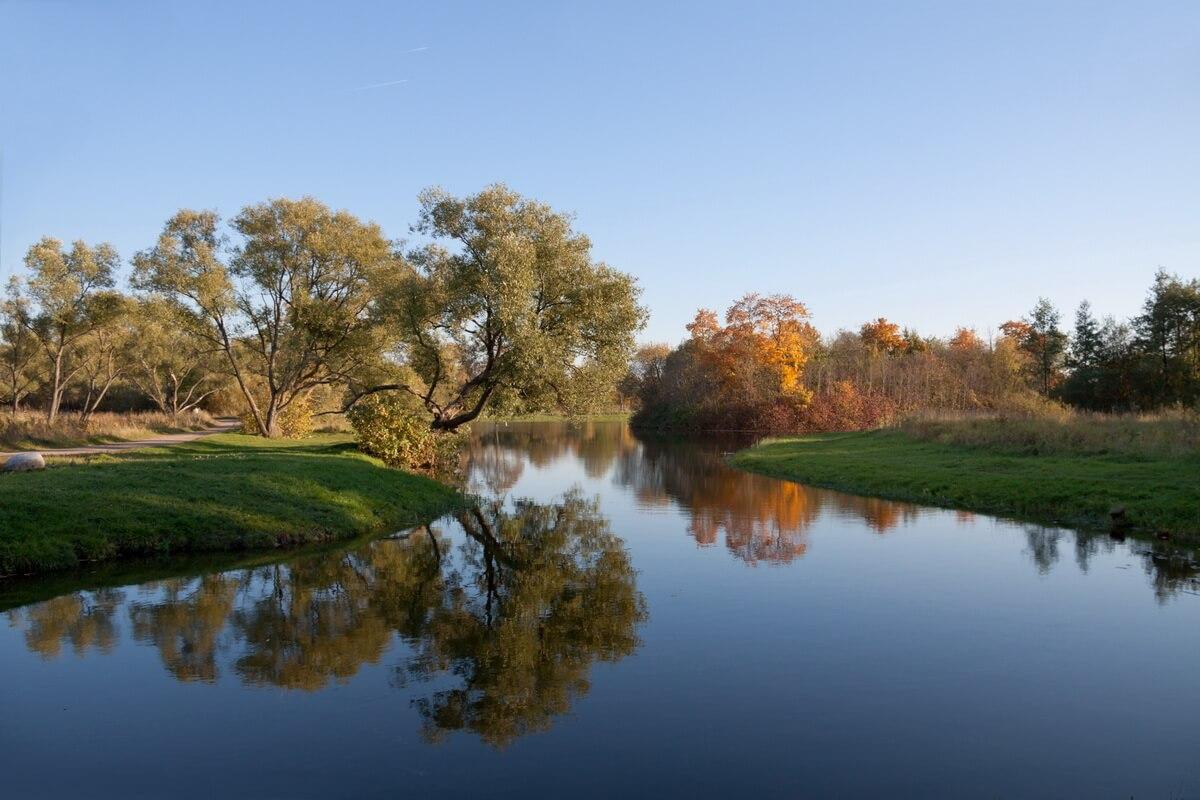Запасной пруд в Луговом парке.